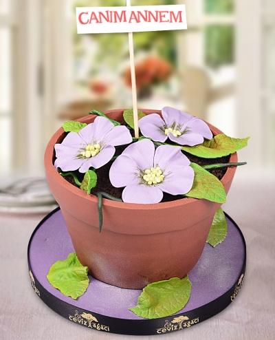 Saksı Çiçeği Anneler Günü Pastası